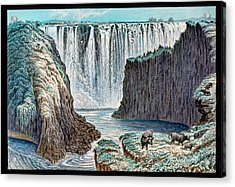Victoria Falls Buffalo Acrylic Print by Gustoimages/science Photo Libbrary