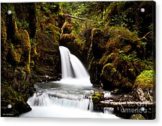 Virgin Creek Falls Acrylic Print by Chris Heitstuman