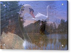 Visions Of Summer Acrylic Print by Rick Todaro