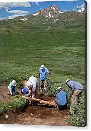 Volunteers Maintaining Hiking Trail Acrylic Print