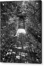 Walk Through Woods Acrylic Print