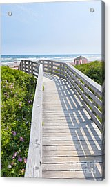Walkway To Ocean Beach Acrylic Print by Elena Elisseeva