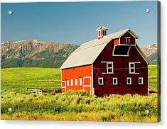 Wallowa Mountains And White Barn Acrylic Print by Nik Wheeler