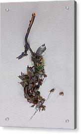 Washed-up Art-  21 Acrylic Print