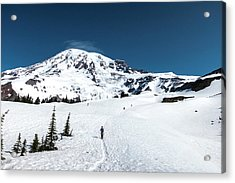 Washington, Mount Rainier Acrylic Print