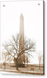 Acrylic Print featuring the photograph Washington by Paula Brown