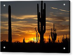 Watching The Sunset Acrylic Print