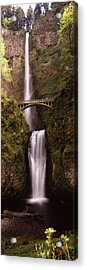 Waterfall In A Forest, Multnomah Falls Acrylic Print by Panoramic Images