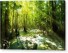 Waterfall In Rainforest Acrylic Print by Atiketta Sangasaeng