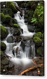 Waterfall Mount Rainier National Park Acrylic Print by Bob Noble Photography