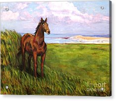 Welsh Breezes Acrylic Print by Ellen Howell