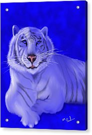 White Acrylic Print by William  Paul Marlette