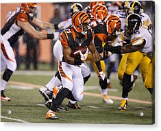 Wild Card Round - Pittsburgh Steelers V Cincinnati Bengals Acrylic Print by Joe Robbins