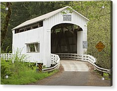 Wild Cat Covered Bridge, Lane County Acrylic Print by William Sutton