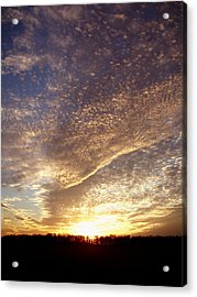 Acrylic Print featuring the photograph Wild Sky 2 by Cynthia Lassiter