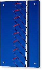 Wind Arrows Acrylic Print by Rona Black