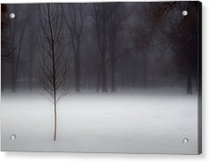 Winter In The Park Acrylic Print by Utah Images