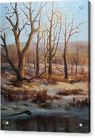 Winter Marsh And Beyond Acrylic Print