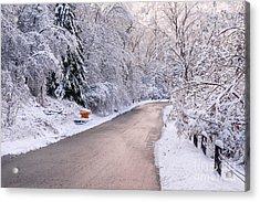 Winter Road After Snowfall Acrylic Print by Elena Elisseeva