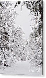 Winter Road Acrylic Print by Cheryl Baxter