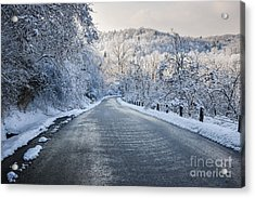 Winter Road Acrylic Print by Elena Elisseeva