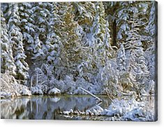 Winter Scene Acrylic Print by Pat Now
