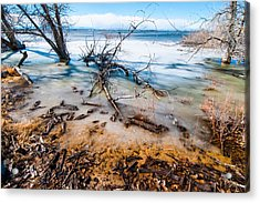Winter Shore At Barr Lake Acrylic Print