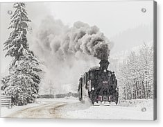 Winter Story Acrylic Print