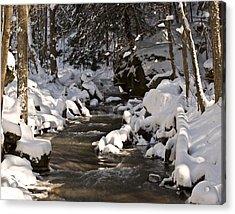 Winter Stream Win 67 Acrylic Print by G L Sarti