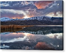 Winter Sunset Acrylic Print by Cat Connor