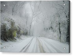Winter Wonderland Acrylic Print by Bill Cannon