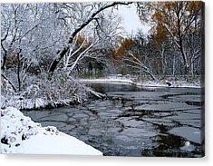 Winter Wonderland Acrylic Print by Larry Trupp