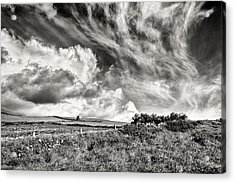 Written In The Wind Acrylic Print by William Beuther