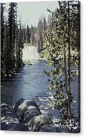Wyoming Stream Acrylic Print by Adeline Byford
