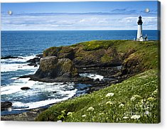 Yaquina Head Lighthouse Acrylic Print by Carrie Cranwill