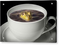 Yikes There Is A Frog In My Java Acrylic Print by Randall Nyhof