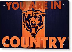You Are In Bears Country Acrylic Print by Celestial Images