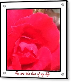 You Are The Love Of My Life By Saribelle Rodriguez Acrylic Print