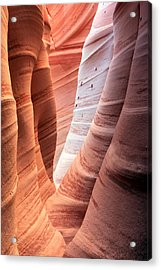 Zebra Canyon  Acrylic Print by Johnny Adolphson