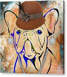 French Bulldog Collection Acrylic Print