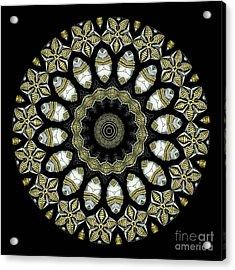 Kaleidoscope Ernst Haeckl Sea Life Series Acrylic Print by Amy Cicconi