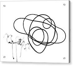 Plant Tendrils Acrylic Print by Albert Koetsier X-ray
