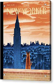 New Yorker January 12th, 2009 Acrylic Print