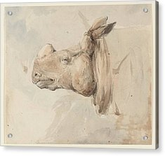 Rhinoceros Acrylic Print by MotionAge Designs
