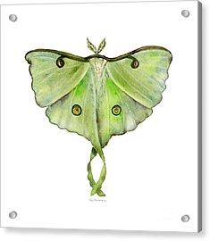 100 Luna Moth Acrylic Print