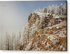 Usa, Colorado, Pike National Forest Acrylic Print