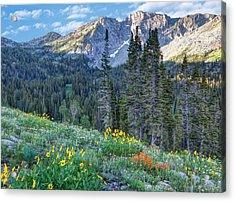 Wasatch Mountains Of Utah Acrylic Print