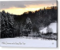 110 Snowscape Acrylic Print by Patrick King