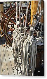 110221p217 Acrylic Print by Arterra Picture Library