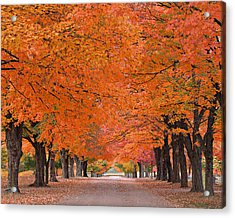 1110-7483 Maplewood Cemetery At Harrision Arkansas Acrylic Print by Randy Forrester